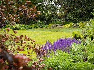 English Meadow Garden